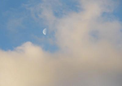 Leftover Moon