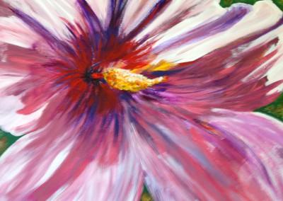 Hibiscus (acrylic)